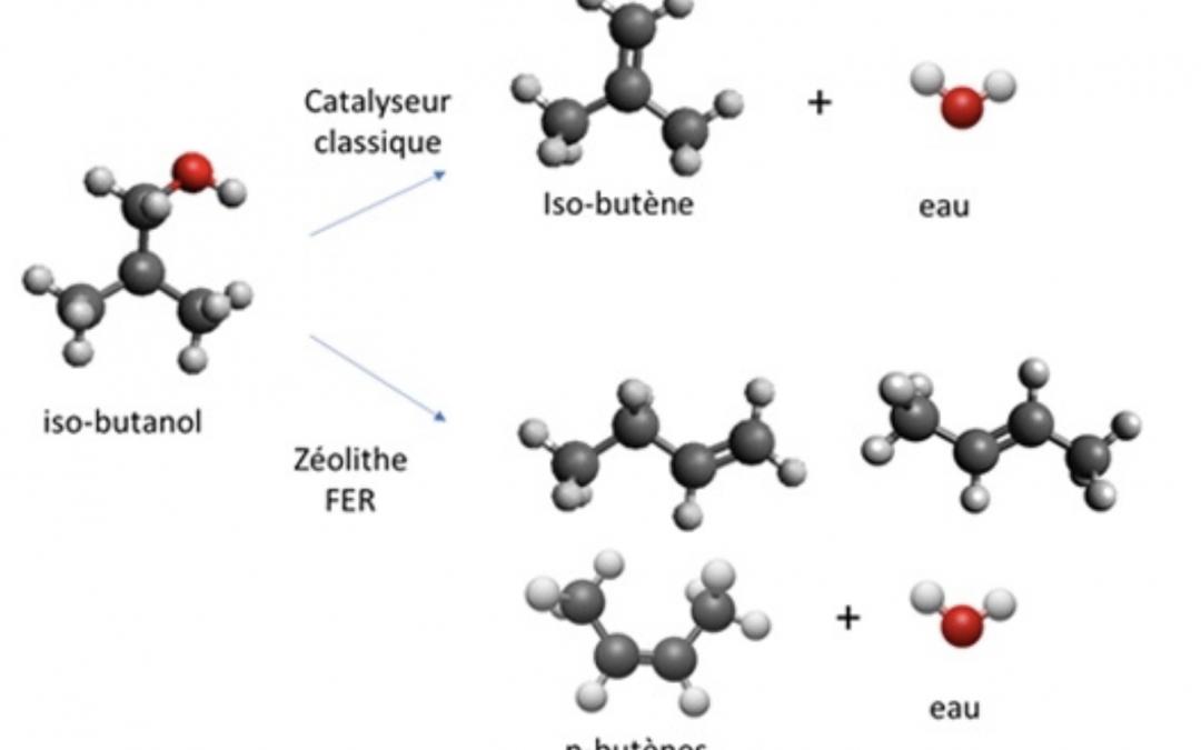 Produire des polymères à partir de bio-ressources