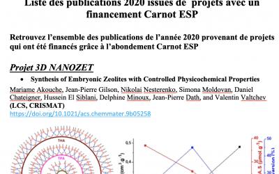 Liste des publications 2020 issues de projets avec un financement Carnot ESP